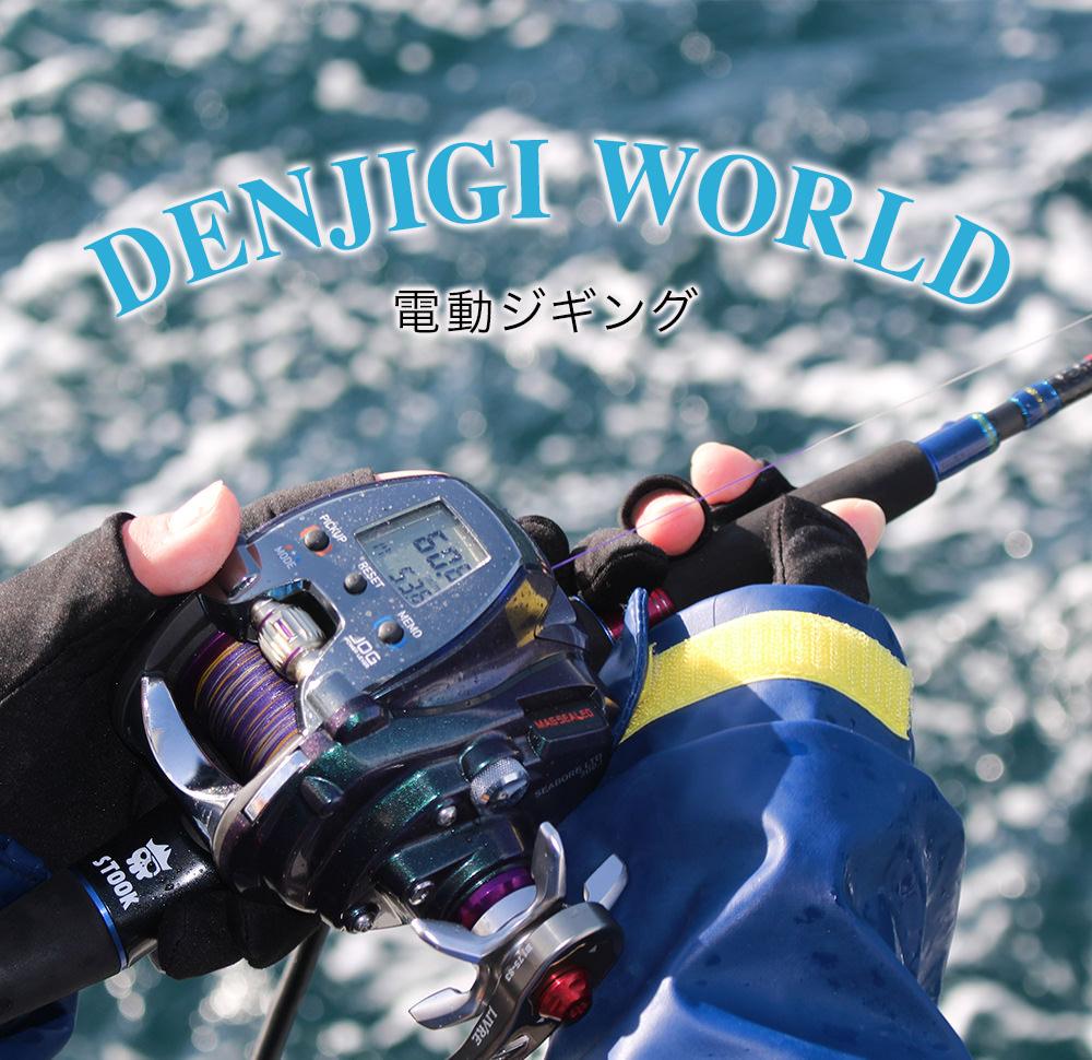 denjigiworld