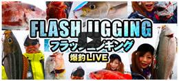 フラッシュジギングで多魚種爆釣-クレイジーオーシャン