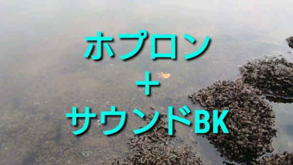 チヌ用フリーリグ『ホプロン』+『サウンドBK』の根掛かり回避能力を見た!