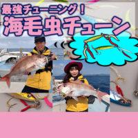 海毛虫チューン